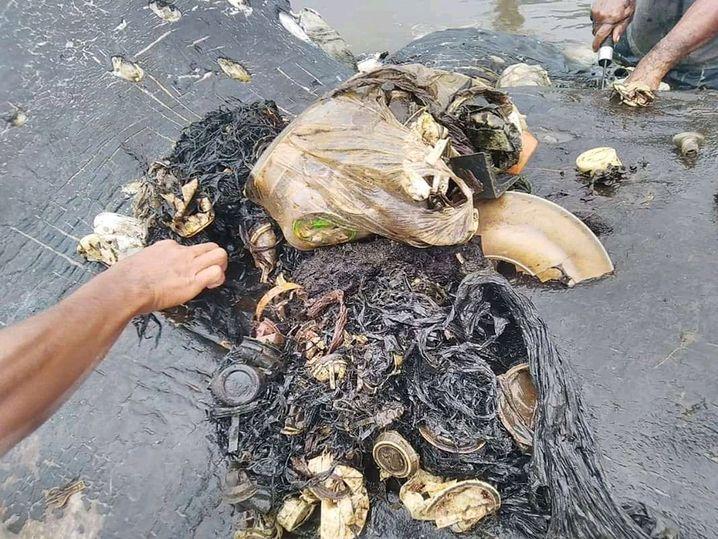 Müll aus dem Magen des Wals
