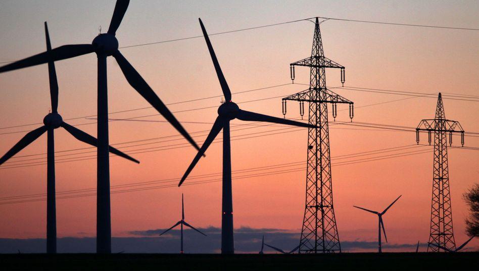 Windräder (in Sachsen-Anhalt): Der Anteil von Ökostrom am gesamten deutschen Elektrizitätsmarkt liegt bei mehr als 25 Prozent