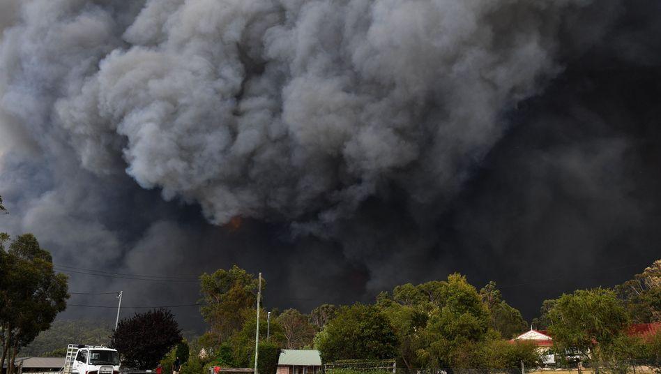 New South Wales in Australien: 2,7 Millionen Hektar Land sind bereits abgebrannt