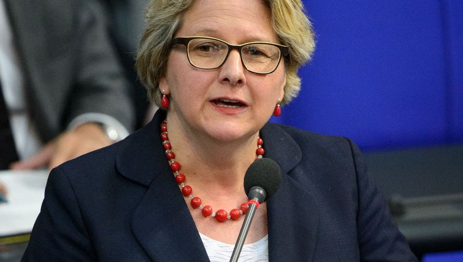 Bundesumweltministerin Svenja Schulze (SPD)