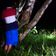 Wie die Nilpferde von Pablo Escobar einen Streit unter Forschern auslösten