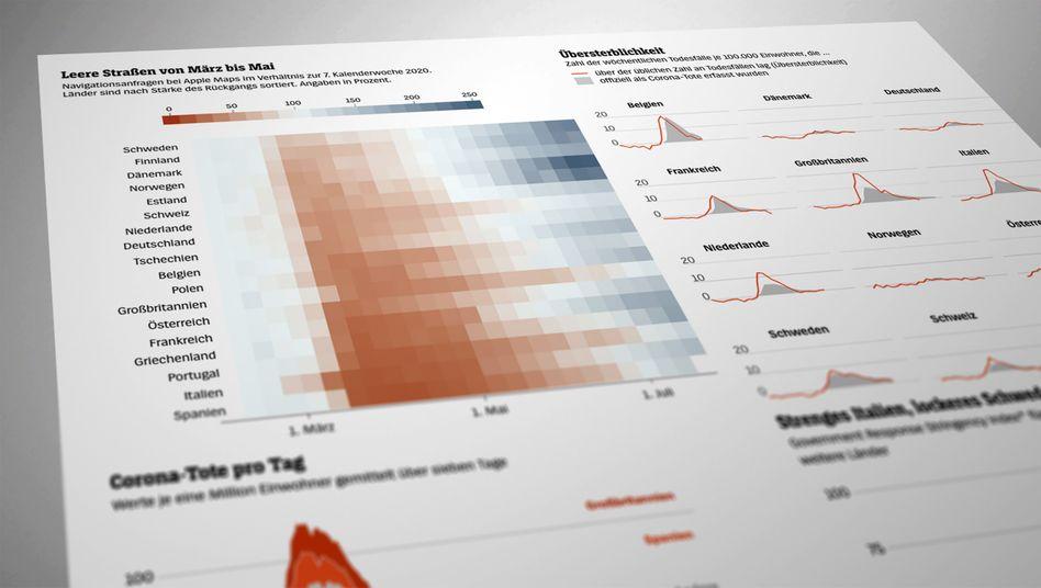 Die Statistiken und Kennzahlen der ersten Monate liefern wichtige Hinweise über den Verlauf der Pandemie