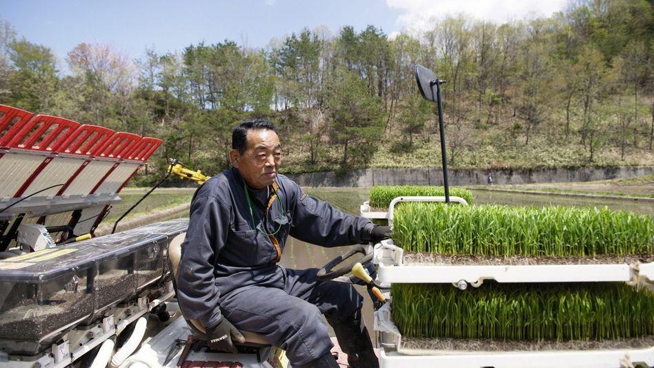 Bauer Hisao Tsuboi: »Allzu genau will ich meine Strahlenwerte gar nicht wissen«