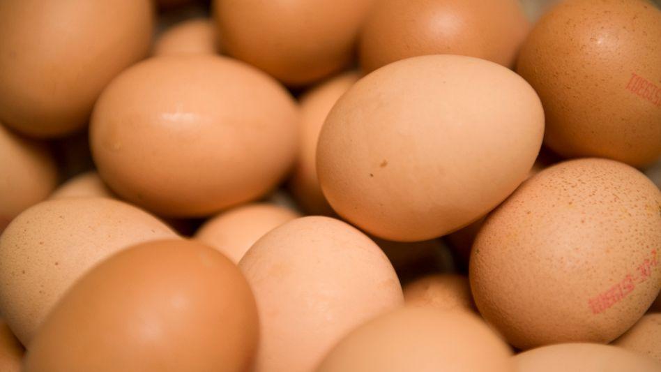 Eier: Große Preisunterschiede zwischen Deutschland und Tschechien