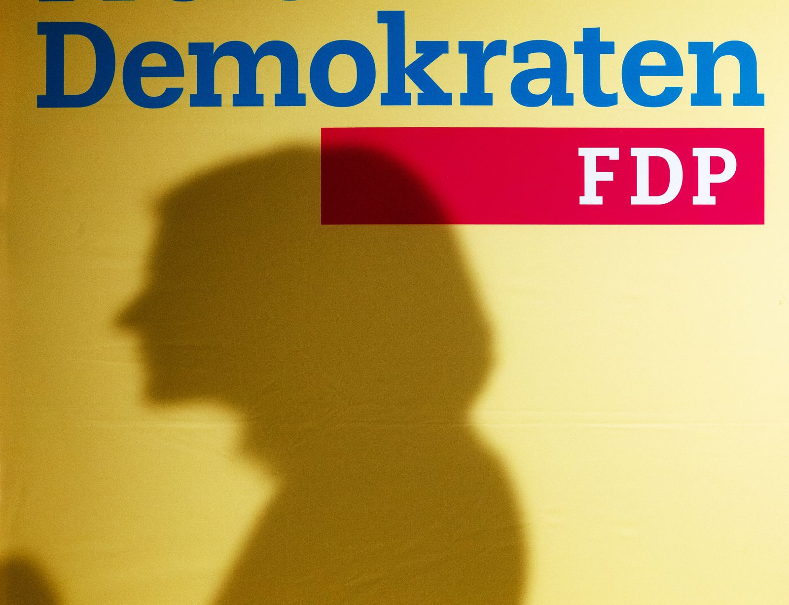 Symboldbild SEO/ FDP