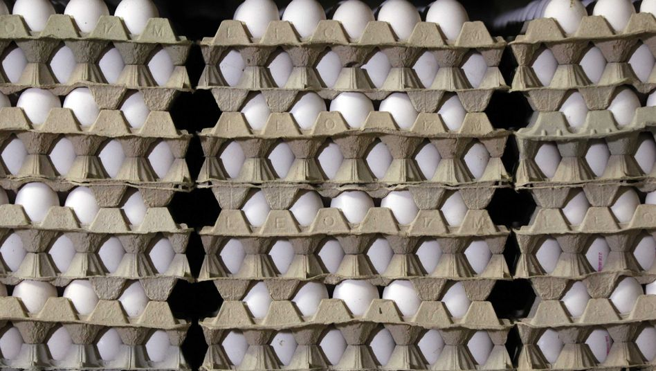 Eierpaletten: Nur vier Prozent der Verbraucher wollen ganz auf Eier verzichten