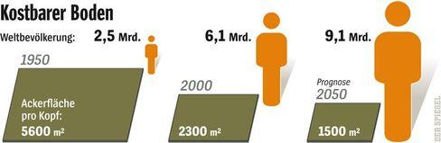 Grafik: Kostbarer Boden