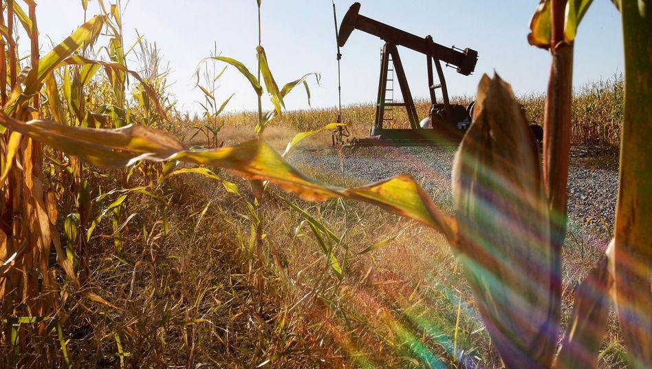 Umsteuern bitte: Die USA sollen weniger Getreide für Biokraftstoff verwenden