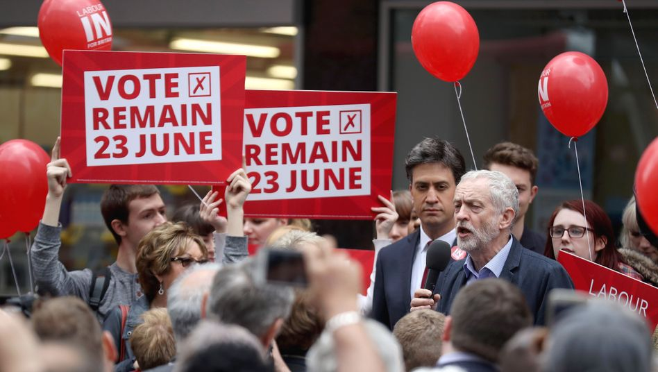 Brexit-Gegner in Großbritannien