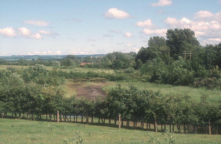 Untersuchungen nahe Berinsfield in der Grafschaft Oxfordshire: Was geschah, als die Sachsen nach Britannien auswanderten?