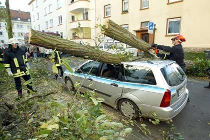 Dachschaden: Vielerorts wurden Autos von umgerissen Bäumen getroffen - wie hier in Koblenz