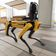 New Yorker Politiker will Bewaffnung von Robotern verbieten