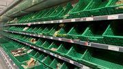 Großbritannien verschiebt geplante Einfuhrkontrollen für EU-Waren