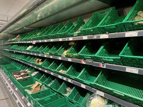 Supermarktregale in Battersea, Südlondon