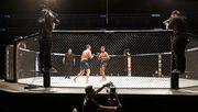 Trump fordert bei UFC-Kampfabend Rückkehr des US-Sports