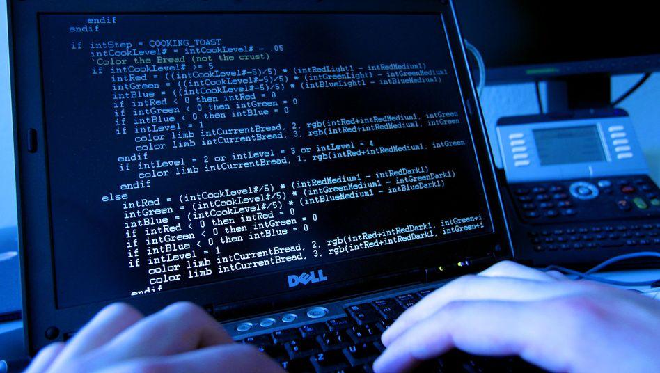 Programmierer (Symbolbild): Ein eigenes Botnet für 700 Dollar