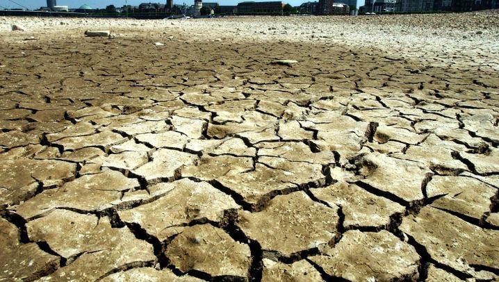 Hitzewelle 2003: 500 Stunden mehr Sonne