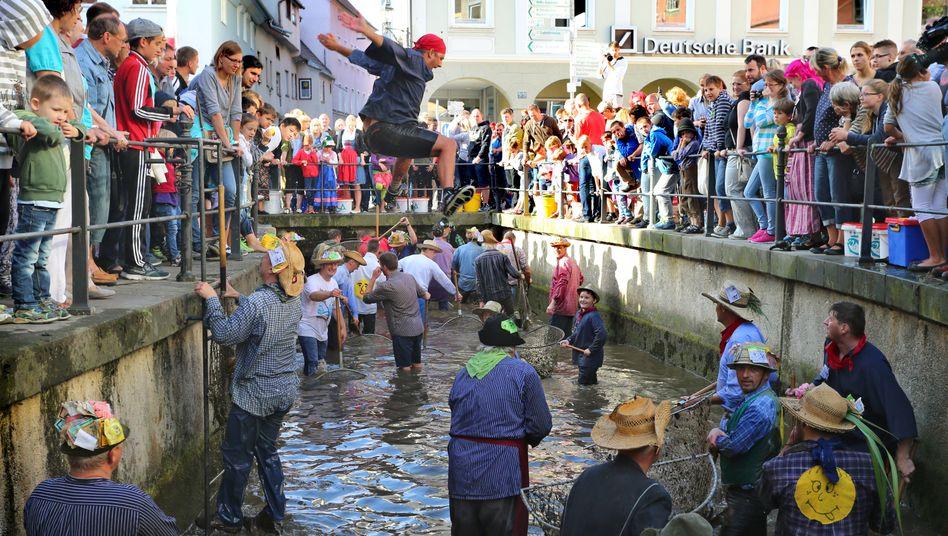 Memminger Fischertag (Archiv): Wer die größte Forelle fängt, wird König