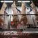 Mehr als 600 Corona-Fälle in Schlachtereien