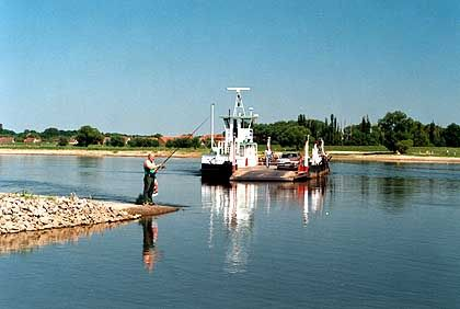 Elbe in Sachsen-Anhalt: Der Elberadweg ist das Lieblingsradreiseziel der Deutschen