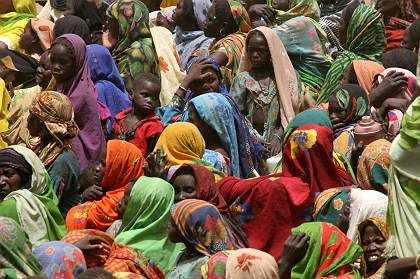 These refugees in Chad are escaping violence in Darfur. But the displaced of the future may be running from the climate.