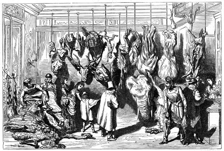 Мясная лавка на бульваре Осман: в декабре 1870 года здесь продавали зарезанных животных из зоопарка. Фото: imago images / Photo12 (Голод в Париже)