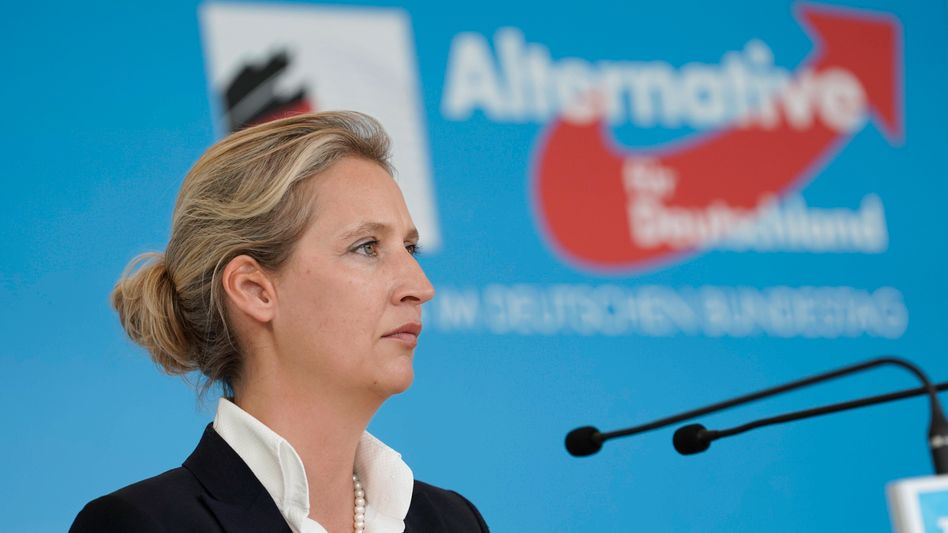 Fraktionschefin Weidel: Kreisverband überwies 1900 Euro
