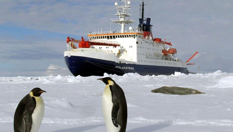 Eisbrecher Polarstern: Große Schneemassen schieben Antarktis-Eis ins Meer