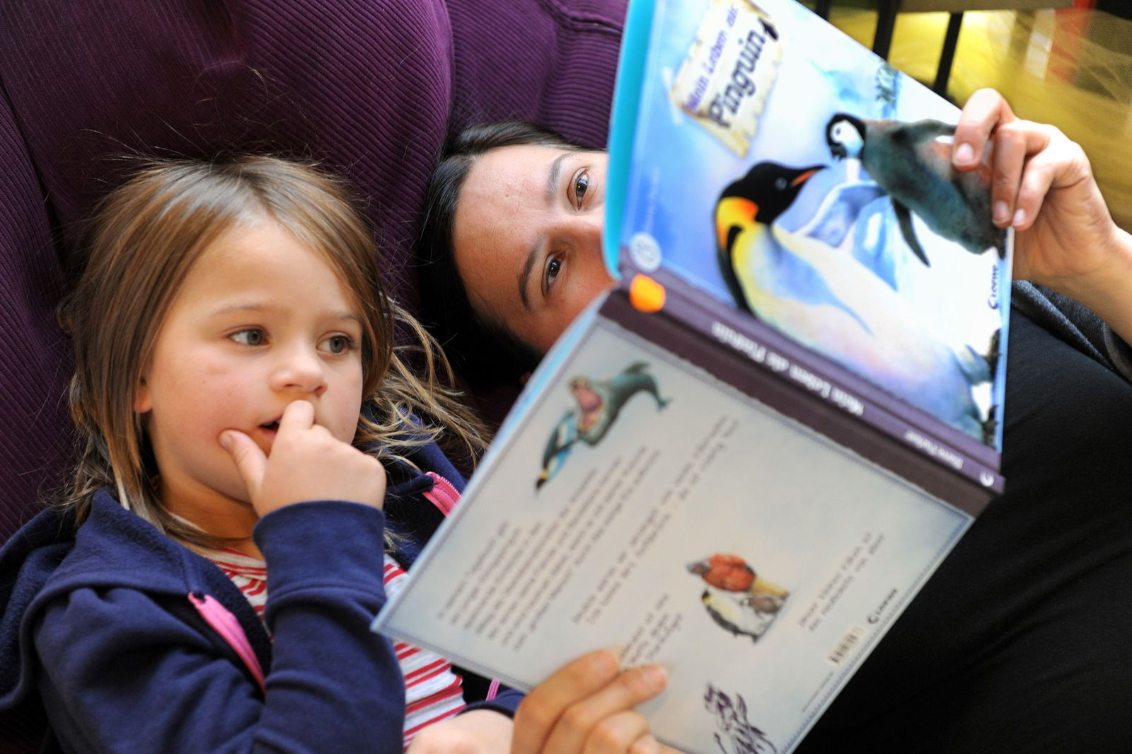 Vorlesestudie / Mutter Kind Lesen