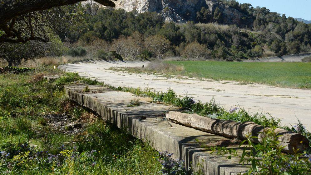 Stillgelegte Rennstrecke in Spanien: Wo nur noch Hennen rennen