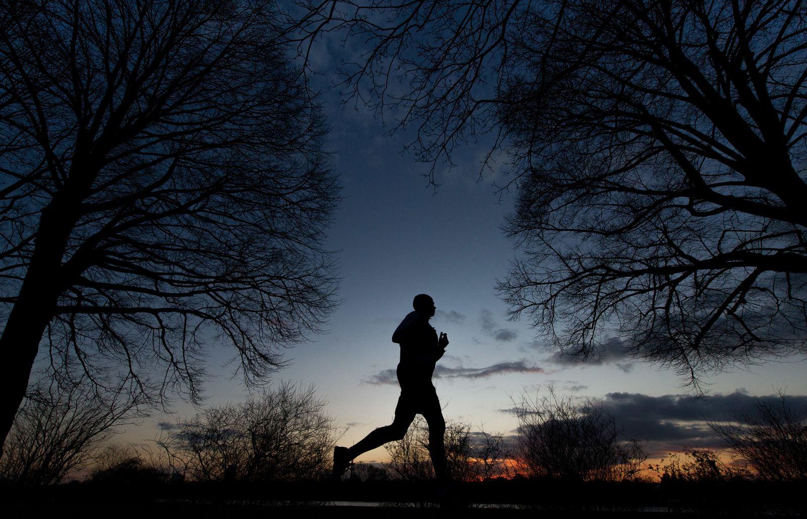 Jogger / Abendsonne an der Alster