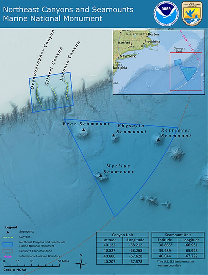 Die beiden einzigen Meeresschutzgebiete im Nordwestatlantik: Ein Gebiet mit enormer biologischer Vielfalt und eindrucksvoller Unterwasserlandschaft, im oberen Teil das Schutzgebiet mit drei Unterwassercanyons, darunter im Dreieck vier Tiefseeberge.