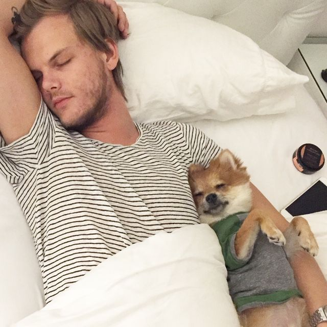 Avicii cultivated a wholesome image.