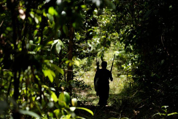 Ein indigener Brasilianer patrouilliert durch das schwer einsehbare Gebiet im Bundesstaat Pará