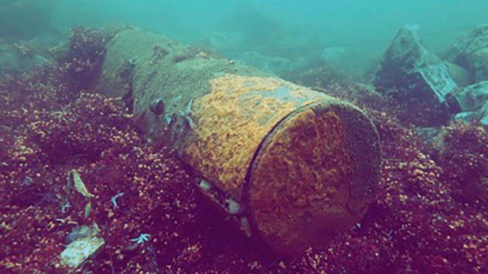 Grundmine mit Sprengstoff und Rotalgen in der Ostsee