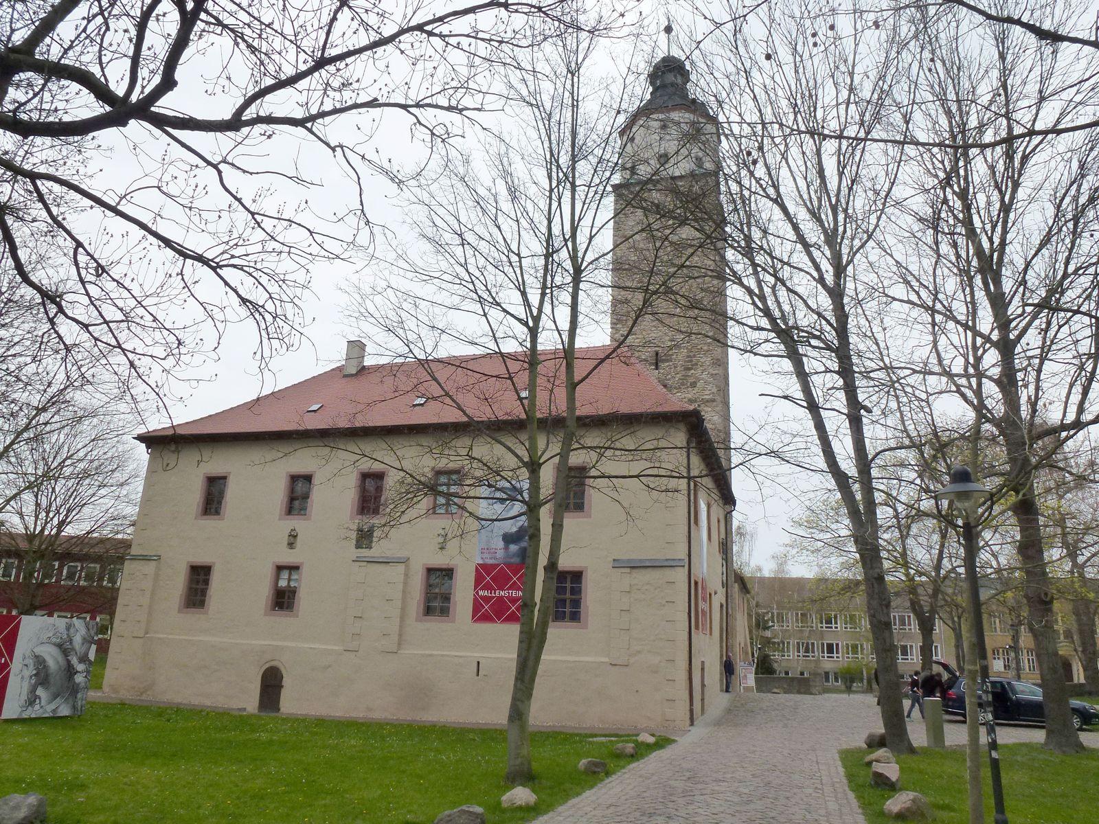 Schlachtfeldarchäologie / Massengrab / Lützen / Halle