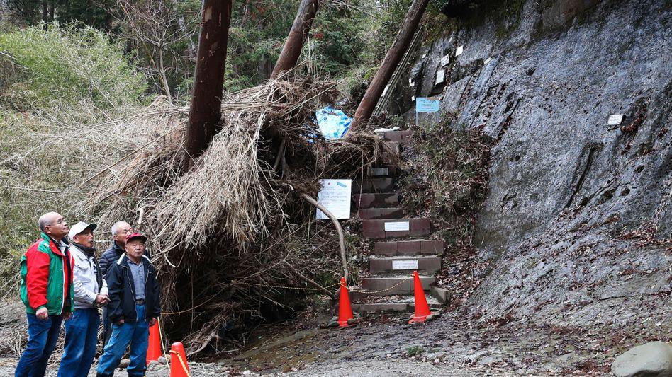 Geologische Formation in der Stadt Ichihara: Eisenhaltige Mineralien richten sich am Erdmagnetfeld aus