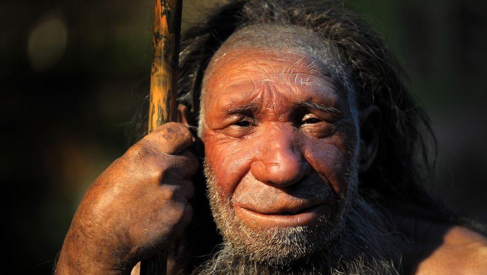 Rekonstruktion eines Neandertalers: Ihm schmeckte auch Gemüse zum Steak