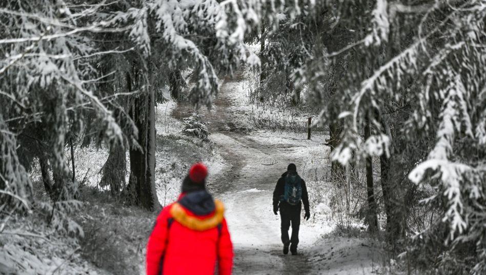 Im Bayerischen Wald fiel an Weihnachten Schnee