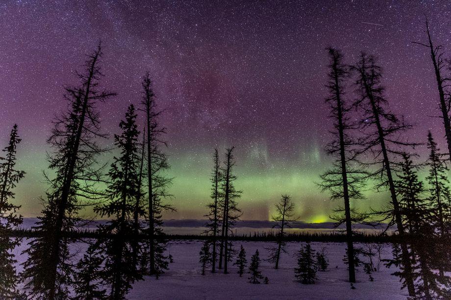 Polarlichter in kalter Nacht