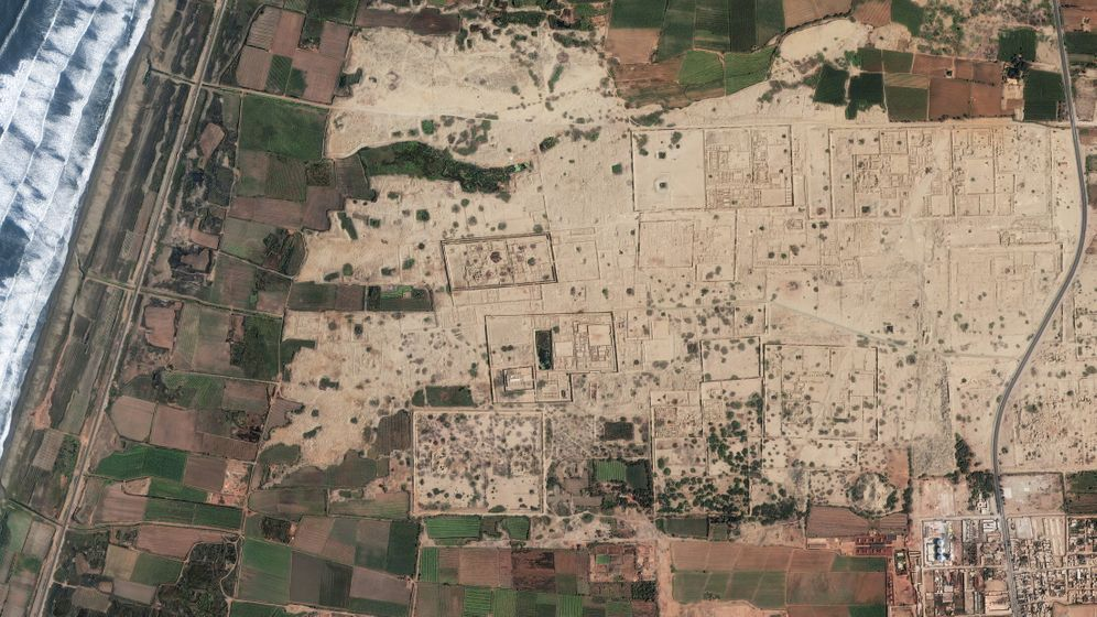Archäologie: Massaker am Meer