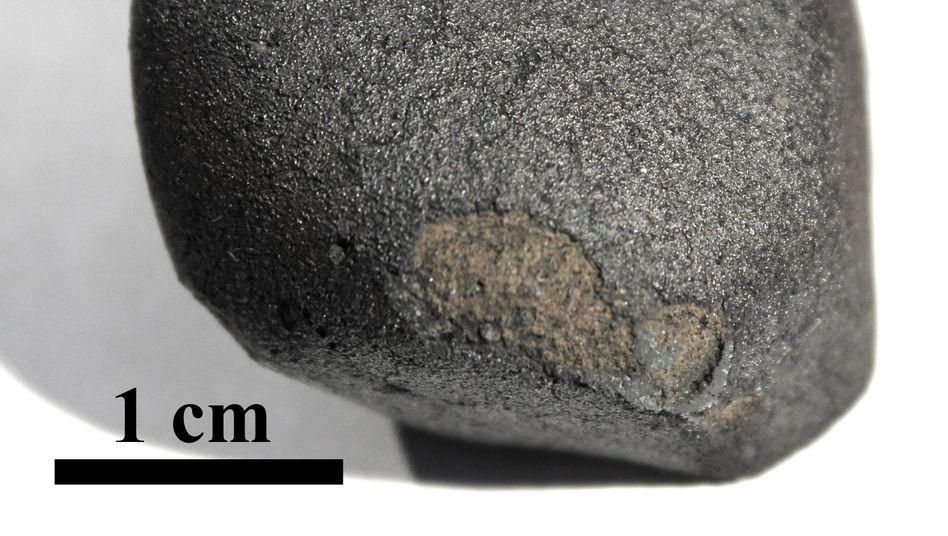 Nach Feuerball über Norddeutschland: Forscher entdecken extrem seltenen Meteoriten in Flensburg