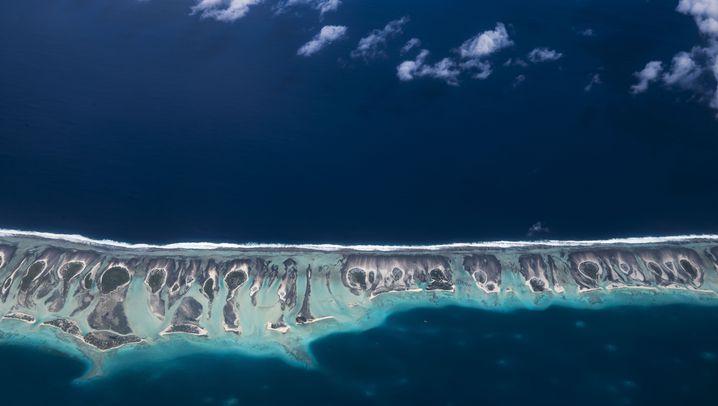 Blog von Michael Martin: Juwelen im Ozean
