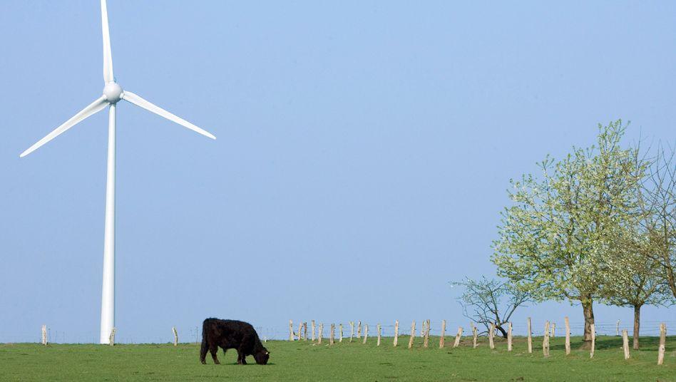 Windkraftanlage in Halen, Kreis Steinfurt (NRW): Ausnahmen bei artenschutzrechtlichen Maßnahmen »in Gebieten rechtssicher ermöglichen«
