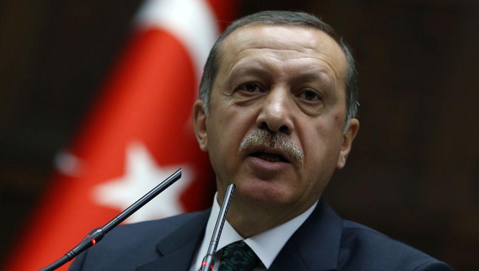 """Ministerpräsident Erdogan: """"diktatorische Herrschaft"""""""