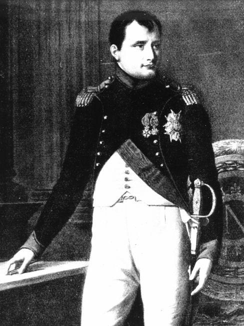 Herrscher Napoleon (Gemälde)