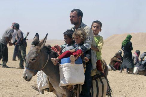 Jesidische Familien unterwegs: Auf dem Rücken des Esels Richtung Syrien