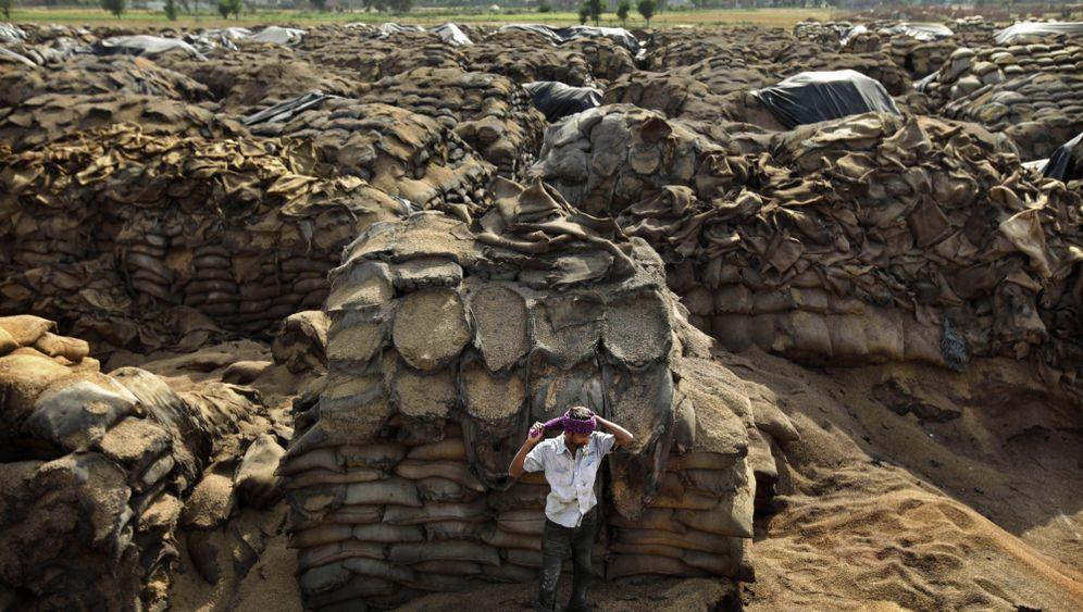 Lebensmittel-Verschwendung: Indiens verschimmelnde Getreideberge