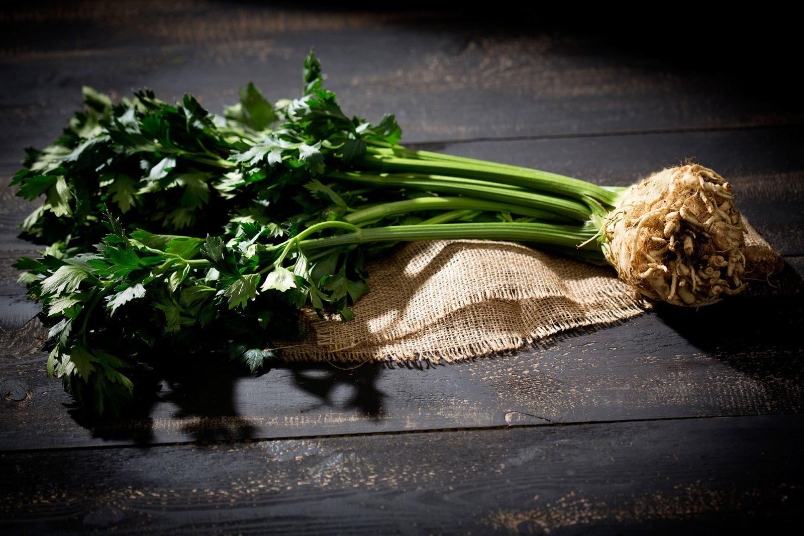 NICHT MEHR VERWENDEN! - Sellerie / Gemüse