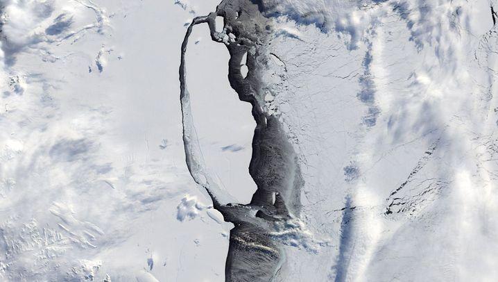 Eisberg A68: Träger Riese